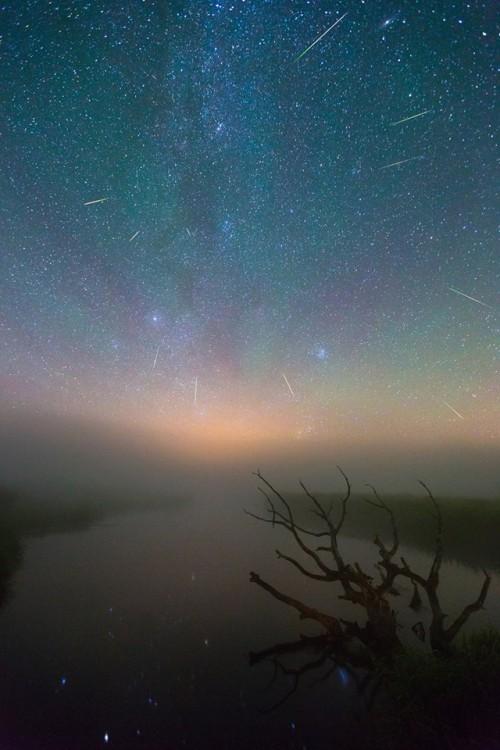 Viktar Malyshchyts metejry