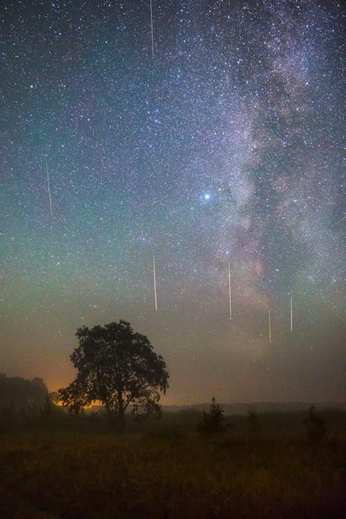 Viktar Malyshchyts metejry2