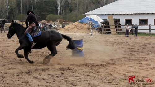 rodeo 2016 7